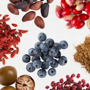 Shakeology Superfruits & Antioxidants